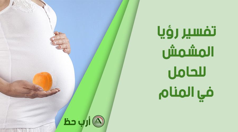 تفسير حلم المشمش للحامل