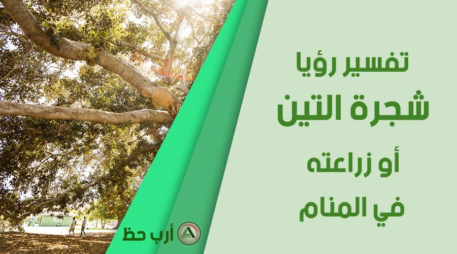 تفسير حلم شجرة التين و زراعة التين