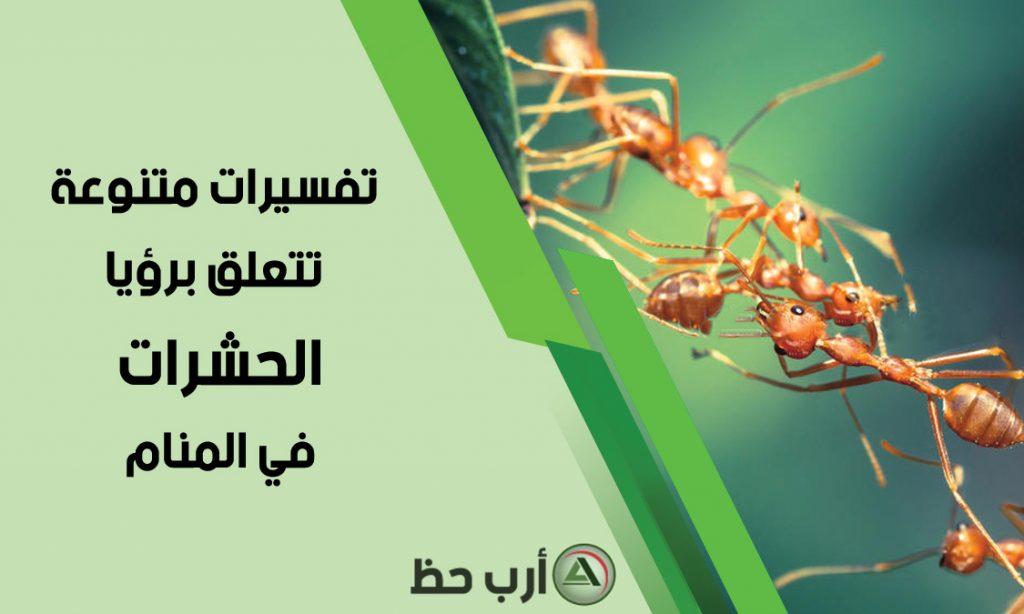 تفسيرات متنوعة تتعلّق بحلم الحشرات