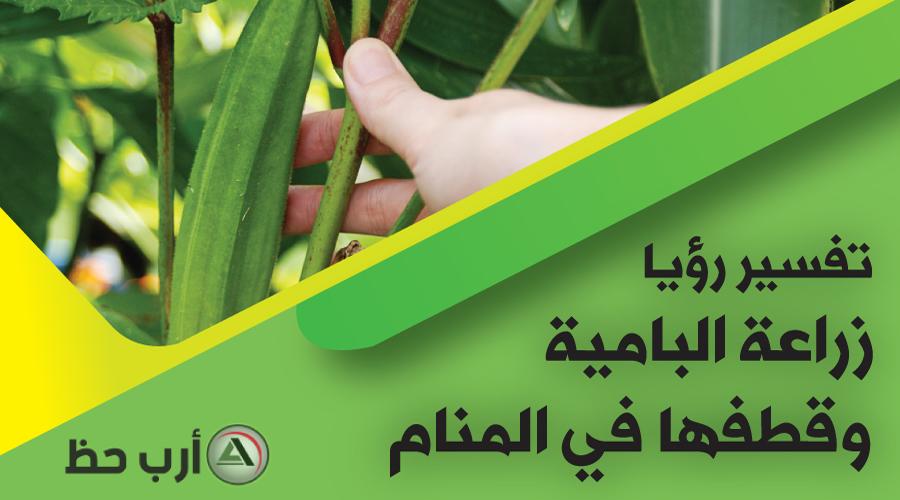 تفسير زراعة البامية وقطفها و شرائها في المنام