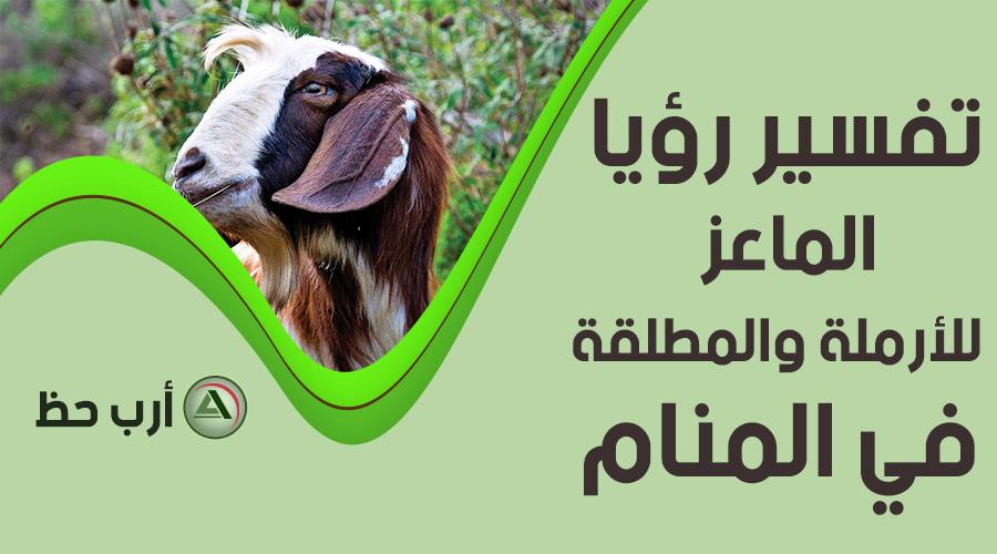 حلم الماعز للمطلّقة أو الأرملة