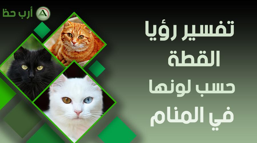 تتفق في الامس شفرة تفسير حلم مهاجمة القط داخل ملابسك Outofstepwineco Com