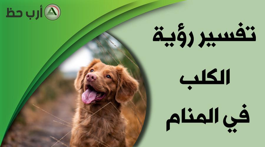 تفسير حلم الكلب