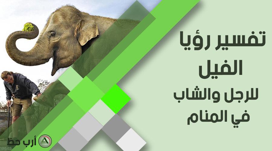 حلم الفيل في منام الرجل و العازب