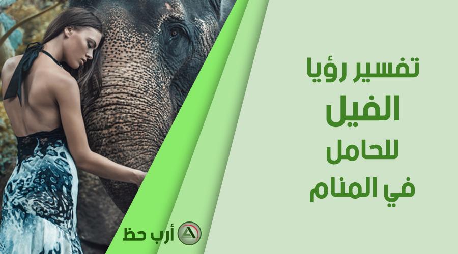 الفيل في منام المرأة الحامل