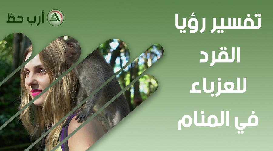 تفسير حلم القرد للعزباء