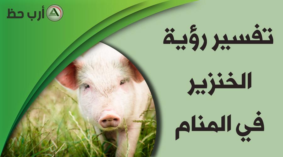 تفسير حلم الخنزير