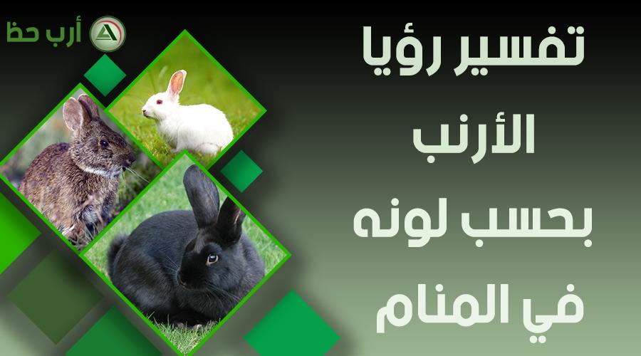 حلم الأرنب حسب لونه