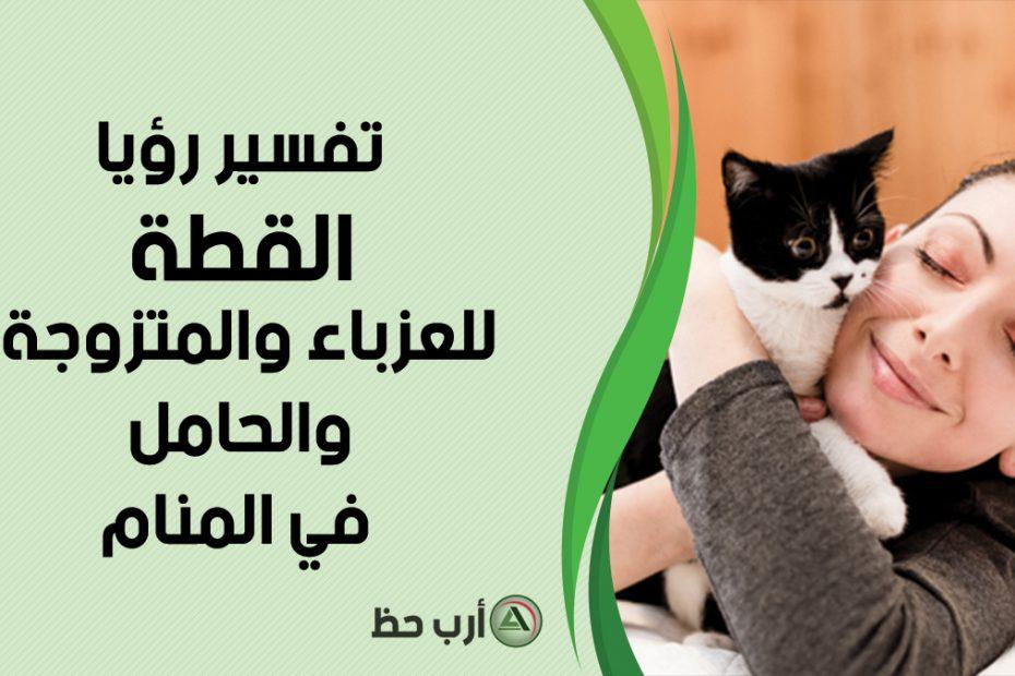 تفسير حلم القطة للمرأة