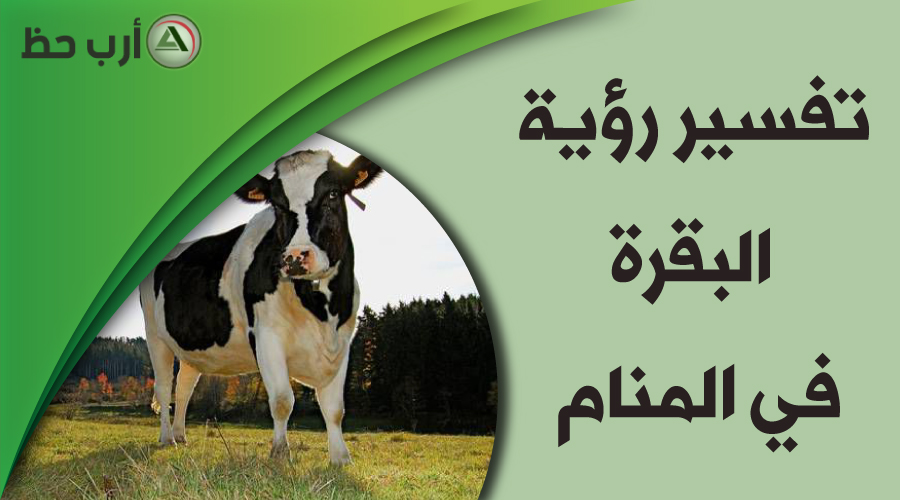 تفسير حلم البقرة