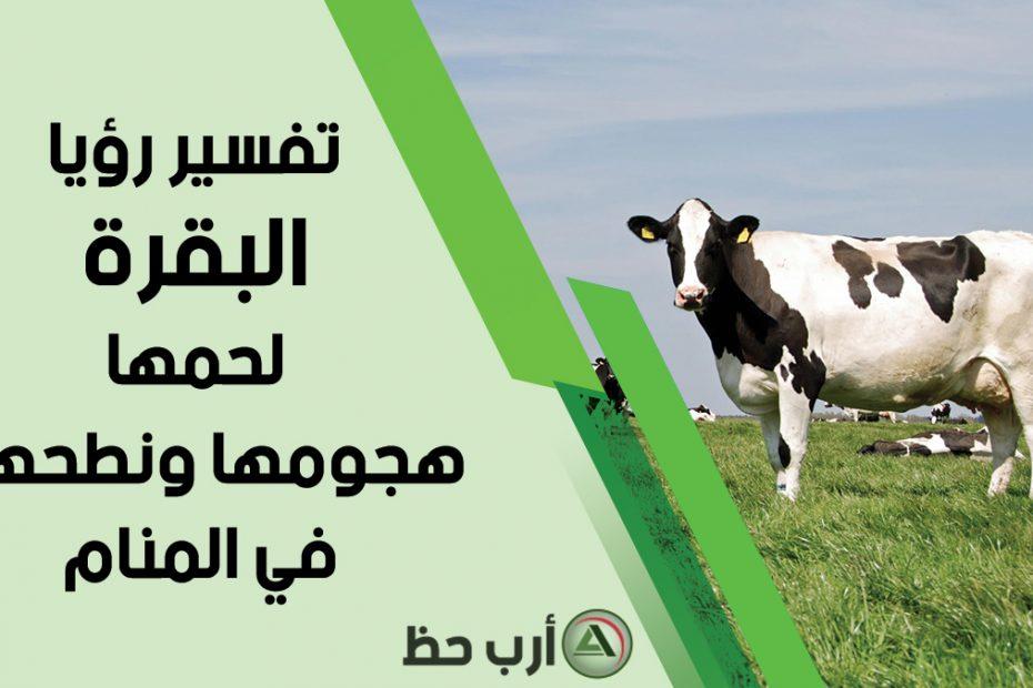 تفسير رؤية البقرة