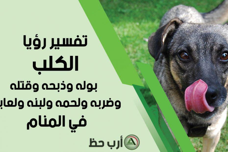 تفسير الكلب في المنام