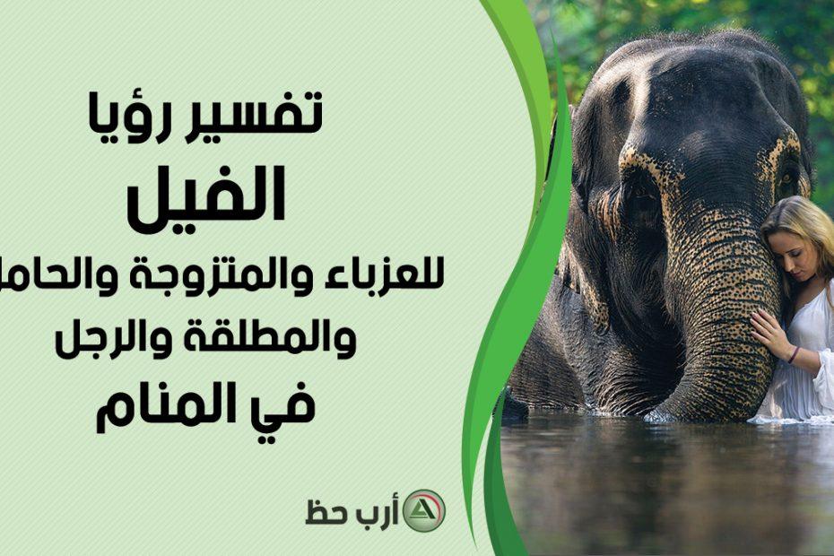 تفسير حلم الفيل للعزباء والرجل
