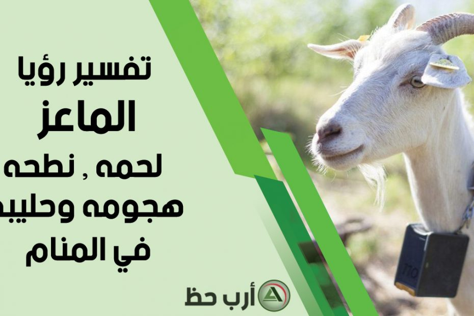 تفسير حلم الماعز وهجومه