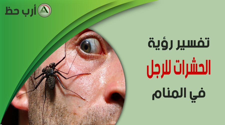 تفسير رؤية الحشرات بأنواعها في المنام للرجل المتزوج والعازب ارب حظ