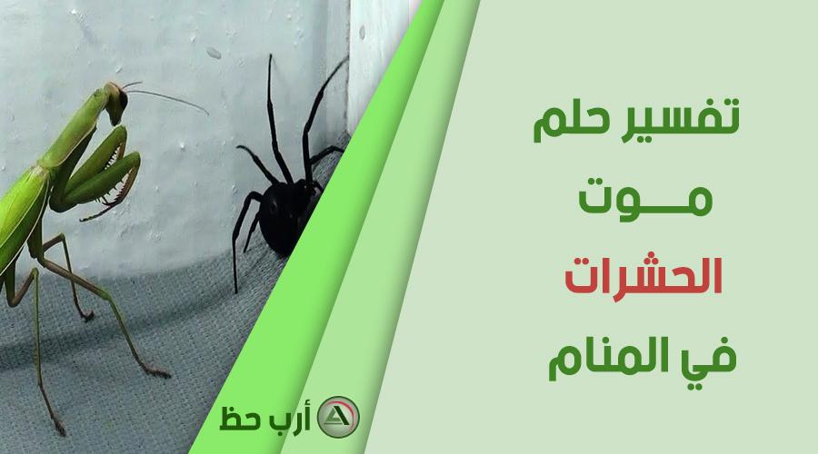 حلم موت الحشرات